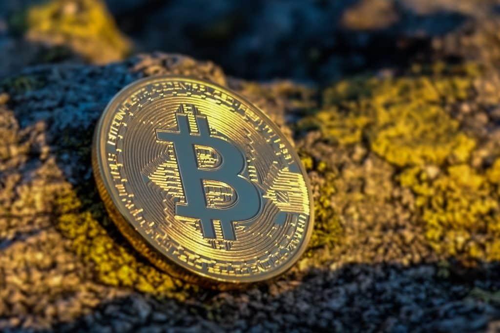 bitcoin, ripple