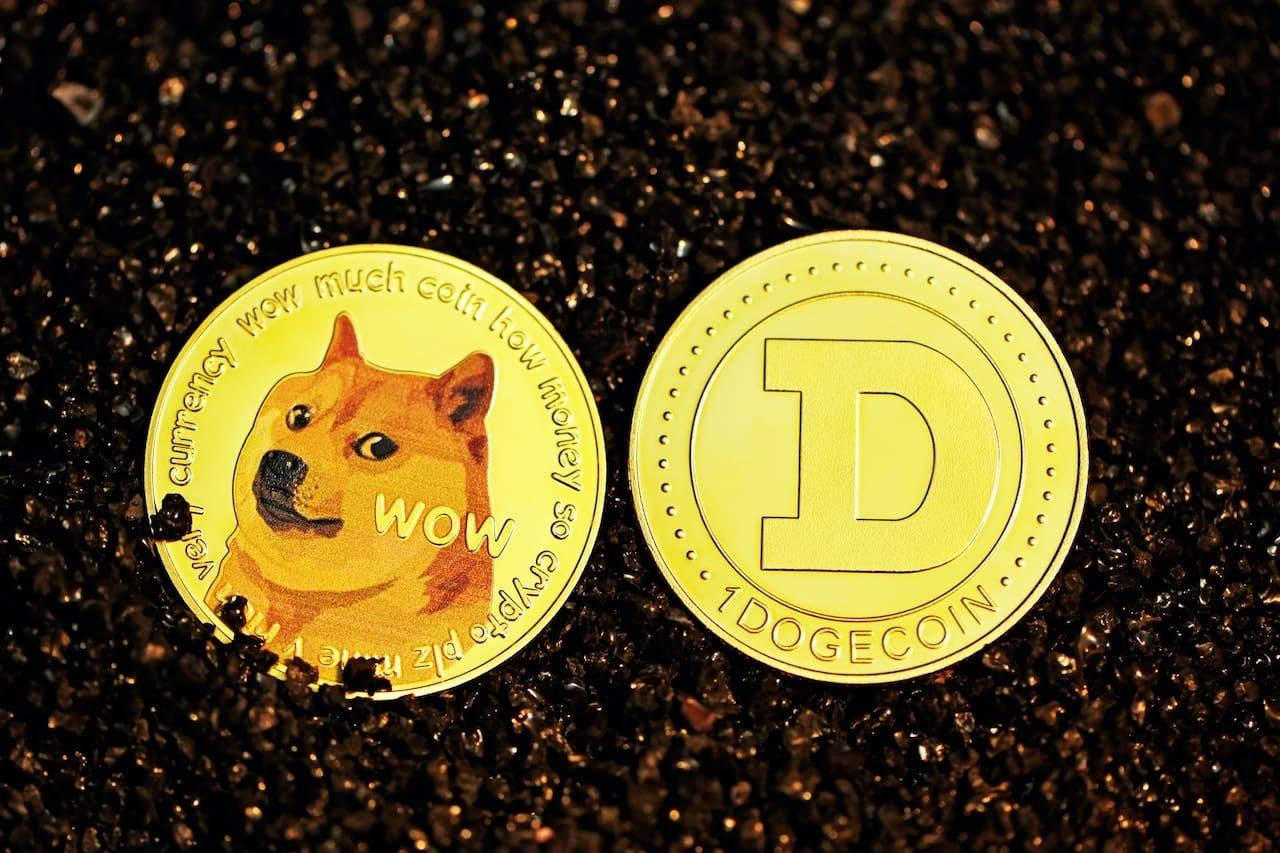 Crypto Shiba Inu Doge coin