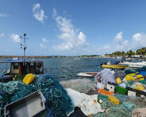 Economie territoires Outre-mer